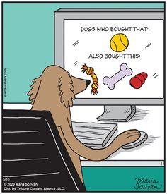 May 16 - Tribune Content Agency Lol, Haha Funny, Hilarious, Funny Stuff, Golden Doodle Dog, R Dogs, Doggies, Pet Boutique, Friday Humor