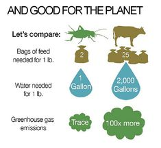 Good for You & Good for the Planet!