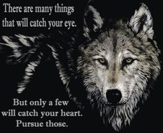 Famous Native American Quotes | http://www.all-famous-quotes.com/native_american_indian_quotes.html