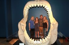 Shark Stewards in Megaladon at the Dallas Museum of Science and Natural History