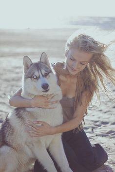 I want one, so pretty. Love huskies!