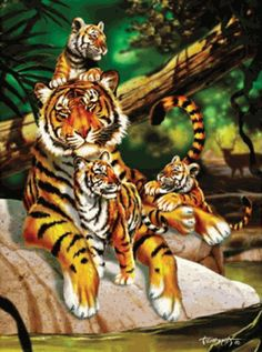 """Family Vacation Bengal Tigers 1000 piece Jigsaw Puzzle    SunsOut Jigsaw Puzzles will provide a challenge for one and all.    Perfect for collectors to mat and frame.    Art by Lorenzo Tempesta    Size: 20"""" x 27""""    Made in the USA, by SunsOut.    Eco-Friendly, Soy Based Inks & Recycled Board.    Recommended Ages: 10 and Up    Consumer Product Safety Notice:  WARNING: CHOKING HAZARD  Small parts Not for children under 3 years      SO54916  Regular price: $16.00  Sale price: $14.40"""