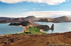 """DID YOU KNOW: """"Galapagos"""" is what Bishop Tomas of Panama named the giant tortoises upon an accidental encounter of the islands and its animals in 1535. Cruise the Galapagos with #VantageTravel today!"""