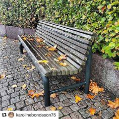 Pause er viktig. #reiseliv #reiseblogger #reisetips #reiseråd  #Repost @karolinebondeson75 (@get_repost)  Høst/Autumn.