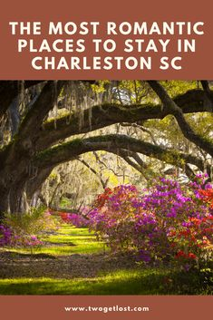 Heading off on a romantic weekend away to the beatiful city of Charleston? Then check out these most romantic places to stay in Charleston and make your trip one to remember. #charleston #america #travel #southcarolina #usa Winter Destinations, Travel Destinations, Romantic Weekends Away, City Of Charleston, Most Romantic Places, Cheap Flights, Best Places To Travel, Winter Travel, Usa Travel