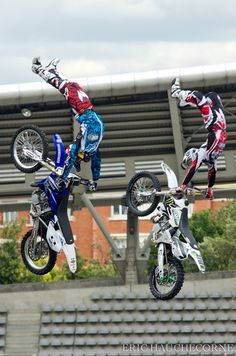 Monster Energy Extreme Freestylers