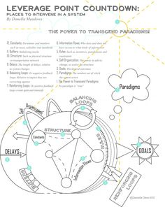 Leverage Points by Donella Meadows Graphic by Danielle Olson