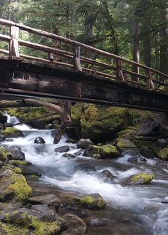 "czechthecount: ""Underneath the Bridge..by czechthecount: instagram | facebook | 500px | society6 """