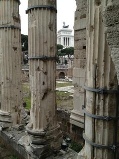 Just left the forum after visiting the temple of Nerva Where my roman upholsterers have their atelier. Quite a view !