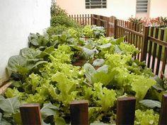 como-fazer-horta-em-casa