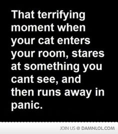 That Terrifying Moment...