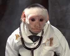 Dr monkey