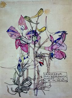 """""""Larkspur by Charles Rennie Mackintosh by - beauty in August 1914 before the brutality of war"""" Illustration Botanique, Botanical Illustration, Illustration Art, Charles Rennie Mackintosh, Art Aquarelle, Glasgow School Of Art, Watercolor And Ink, Watercolor Flowers, Paintings I Love"""