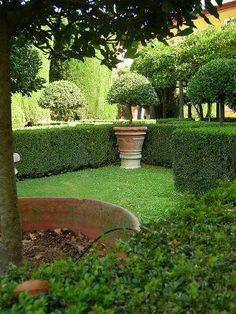 Trimmed hedges and potted trees Boxwood Garden, Topiary Garden, Boxwood Hedge, Formal Gardens, Outdoor Gardens, Landscape Design, Garden Design, Pot Jardin, Potted Trees