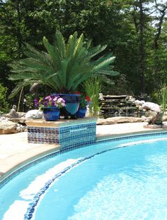 Sago Palm Potted Palms, Sago Palm, Dream Beach Houses, Outdoor Spaces, Outdoor Decor, Artificial Plants, Plant Decor, Garden Plants, Palm Trees