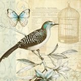 Another bird and butterfly. Can't get enough!