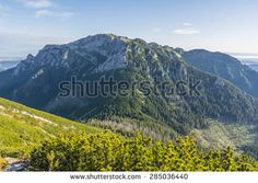 Prominent peak (Kominiarski Wierch, Kominy Tylkowe) of Western Tatras in Poland, which is a nature reserve area