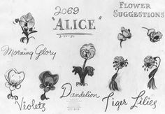 The flowers in Disney& Alice in Wonderland have attitude issues. Friendly at first when a downsized Alice approaches them, but then thei. Alice In Wonderland Flowers, Alice And Wonderland Tattoos, Disney Concept Art, Disney Art, Disney Wiki, Disney Stuff, Walt Disney, Tattoo Designs, Tattoo Ideas
