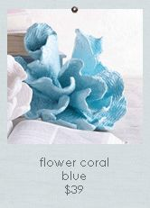 Seaside Inspired | Coral Decor | decorative coral and coral decor from SeasideInspired.com.