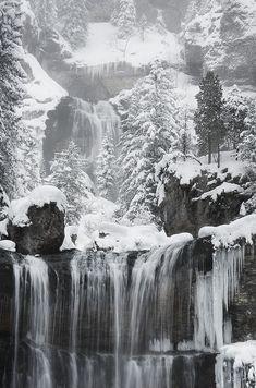 Realm of Winter - Alexandre-Deschaumes