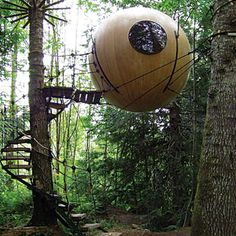 Free Spirit Spheres, Vancouver Island, BC: oversize orbs made from Sitka spruce and yellow cedar that dangle from conifer trees like spiders from a web in a Vancouver Island rain forest. Oh The Places You'll Go, Places To Visit, Unusual Hotels, Alaska, Conifer Trees, Vancouver Island, Dream Vacations, Best Hotels, Architecture