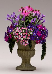 Purple coneflowers (Petunias and Impatiens arrangement in planter - wonderful!)