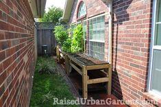 13 Benefits of Raised Urban Gardening