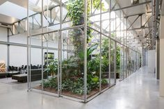 Space Encounters converts factory into greenhouse-filled offices | Space Encounters converts Amsterdam factory into greenhouse-filled offices