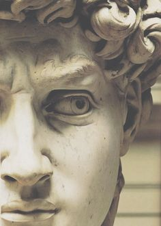 """Detail of """"David"""" is a masterpiece of Renaissance sculpture created between 1501 and by the Italian artist Michelangelo. It is a marble statue of a standing male nude. The statue represents the Biblical hero David. Art Ninja, Ancient Greek Sculpture, Greek Statues, Buddha Statues, Italian Statues, Stone Statues, Renaissance Kunst, Italian Renaissance Art, Italian Sculptors"""