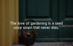 The love of gardening is a seed once sown that never dies. Mowing Services, Rooting Roses, Yard Maintenance, Commercial Landscaping, Day Schedule, Viral Trend, Landscaping Company, Top News, Technology News