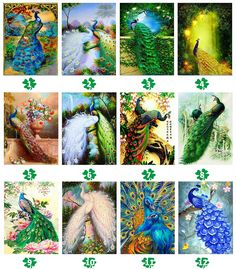 5D DIY Diamond Painting Animal Diamond Mosaic Cross Stitch Full Square – Ezbuypay Peacock Pictures, Mosaic Crosses, Peacock Painting, 5d Diamond Painting, Good Morning Wishes, Nature Wallpaper, Animal Paintings, Things To Buy, Cross Stitch