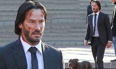Keanu Reeves is scraped up in suit as he goes walks pit bull
