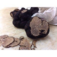 Truffes noire du Périgord