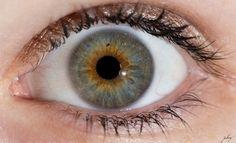 Human eye - Surprised?
