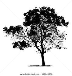 SILUETAS PINOS Ilustraciones en stock y Dibujos | Shutterstock