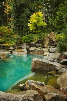 rugged plunge pool looks like a piece of the Cascade Mountains. it's a nonchlorinated, sun-heated, saltwater swim pool that forms the centerpiece of the garden.
