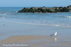 Taking your mind to a calm place http://www.jerseyshoremindfulness.com/taking-your-mind-to-a-calm-place/