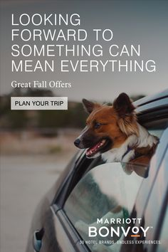 Feel the excitement of exploration again. Plan your next escape and save with great fall offers.