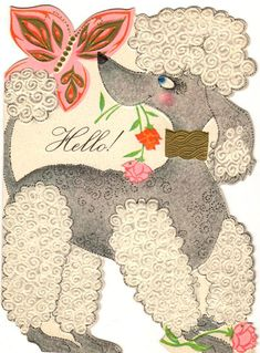 https://flic.kr/p/qvaygB | get-well-poodle