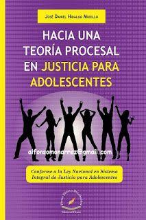 LIBROS EN DERECHO: HACIA UNA TEORÍA PROCESAL EN JUSTICIA PARA ADOLESC...
