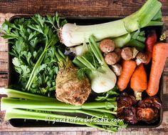 Vegetable Bouillon mise en place
