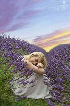 Fields of Lavender Lavender Cottage, Lavender Blue, Lavender Fields, Lavender Flowers, Love Flowers, Purple Flowers, Beautiful Flowers, Beautiful Pictures, Lavander