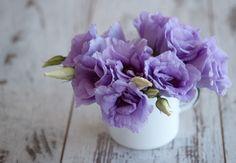 Petite Purple