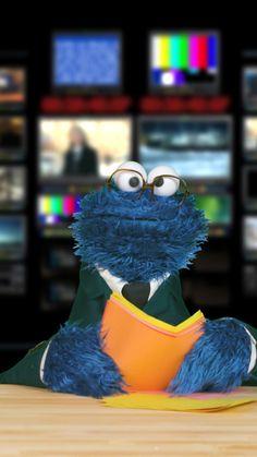 Breaking News: Sesame Street will now be called Cookie Street — or will it? Sesame Street Muppets, Sesame Street Characters, Cookie Monster Quotes, Cookie Monster Puppet, Sesame Street Quotes, Elmo Videos, Sapo Meme, The Muppet Show, Jim Henson