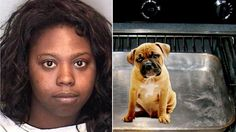 Maximum penalty for Illinois woman that cooked three-month-old puppy in 300-degrees oven! | YouSignAnimals.org