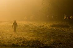 Morning Walker by beatriceverez Pinned by Tyler Hochstetler