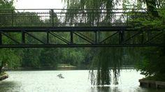 Free HD Background 4U [NO Copyright] :: Lake Nature Reflection Relax Tre...