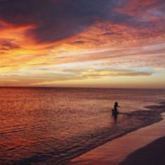 See this every night on your next vacation to Sarasota, FL.