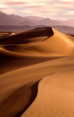 Lines in the Sand - This was shot in Death Valley a few years ago. I think it was towards the end of the day, not sunrise. Deserts Of The World, Desert Life, Death Valley, Slytherin, Aesthetic Pictures, Beautiful Landscapes, The Great Outdoors, Nature Photography, Travel Photography