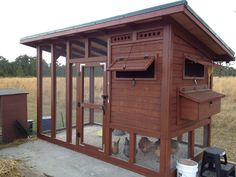 Nice how-to on the individual parts of a larger coop.